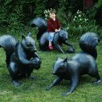 squirrels4crop